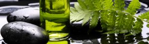 aromatherapie-850x255-e33606